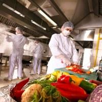 Formation Les dangers et les risques en hygiène alimentaire